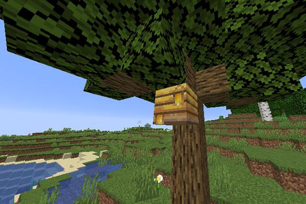 Гнездо с медом