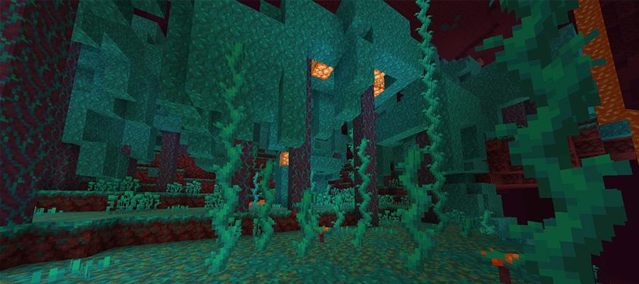 Биом Искажённый лес